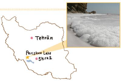 パリシャン湖の塩